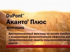 Фунгицид DuPont™ Аканто® Плюс