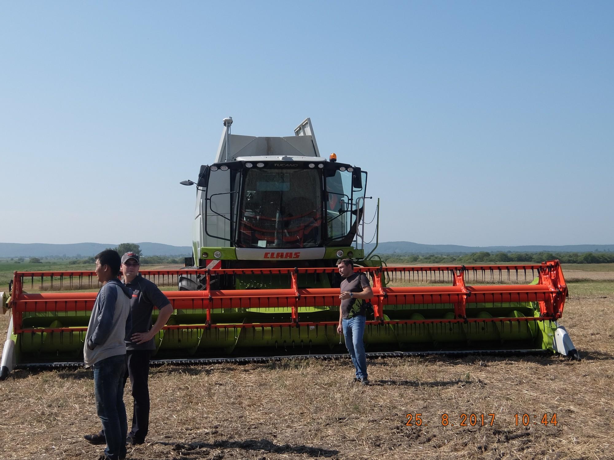 Выращивание зерновых культур ооо 900