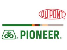 DuPont Pioneer (Дюпон Пионер)