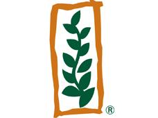 Monsanto (Монсанто)