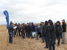 Выездной семинар «Новые элементы технологии возделывания сои и кукурузы в условиях Приморского края» от компании BASF