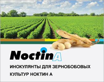 Инокулянты для зернобобовых культур «Синтесис Кимика»